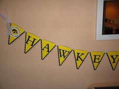 Iowa Hawkeye Banner