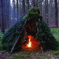 Full video on Youtube. Primitive wikiup bushcraft shelter and campfire in the middle. Makeshift survival shelter. #bushcraft #primitiveshelter #wikiup #survivalshelter