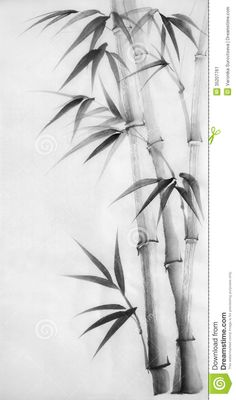 Illustration about Original watercolor painting of bamboo, Asian style. Illustration of japanese, black, stem - 35207761 Japanese Ink Painting, Sumi E Painting, Japanese Drawings, Boat Painting, Japanese Prints, Chinese Painting, Chinese Art, Japanese Art, Watercolor Paintings