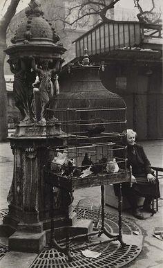 Rosalie Gwathmey (Sep. 15, 1908 - 2001) Paris Bird Market, 1950s.  This looks very vintage.