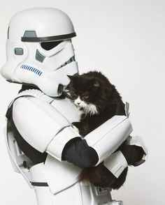 May the furce be with you TAG someone who is excited for Star Wars opening tonight!#menandmeows