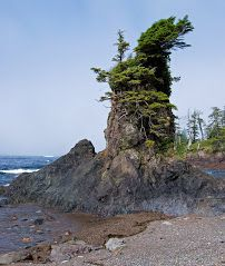 sea stack, cape scott, bc View Map, Cape, Sea, Outdoor, Beautiful, Mantle, Outdoors, Cabo, The Ocean