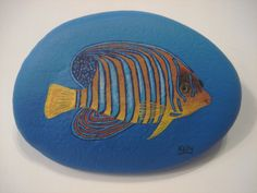 Royal Angelfish Hand Painted on A Rock by Ann Kelly | eBay
