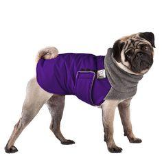PUG Winter Dog Coat Dog Coat Winter Coat Dog by VoyagersK9Apparel