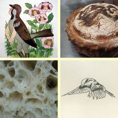 farm and sparrow.best bread ever.really.