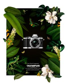 The challenge was to make a print ad for one of Olympus' travel cameras.This model can withstand dust, humidity, is quick, compact, and more robust than some of the other cameras in their range. A damp jungle theme seemed perfect to illustrate its qualiti…