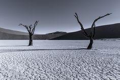 As paisagens remotas de Tom Jacobi