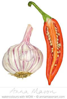 "Chilli and Garlic © 2007 ~ annamasonart.com ~ 31 x 41 cm (12"" x 16"") #AnnaMasonNewSite"