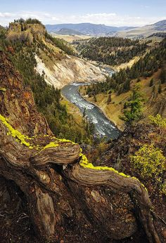 Yellowstone National Park ~ Wow what an incredible view!
