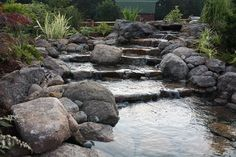 Pet Supplies Brave Tetrapond Water Garden Pump Powers Waterfalls/filters/fountain Heads