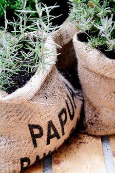 Un sac de café pour des plantes