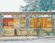 Liu Bolin_artiste performance Chinois  Camouflage