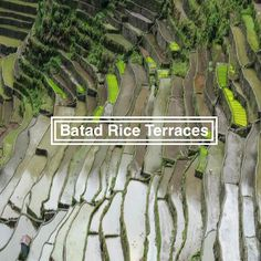 The Batad rice terraces belong to the UNESCO World Heritage Site 'Rice Terraces of the Philippine Cordilleras'. This site is located in the Philippines. Rice Terraces, Philippines