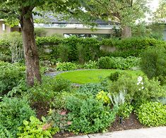 New Home Interior Design: Stunning Shade Garden Design Ideas