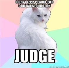 Beauty Addict Kitty meme