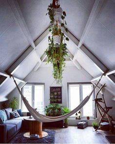 Attic office/ work out space/ chill space, with hammock and plants! Chill Lounge, Chill Room, Chill Out Room Ideas, Indoor Hammock Chair, Boho, Attic Bedrooms, Attic Spaces, Attic Office Space, Attic Remodel