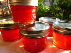 Jalapeno Cranberry Jelly (Christmas Jelly). Photo by gailanng