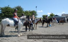 Horse riding for all at Moycullen Riding Centre Connemara, Horse Riding, Trekking, Centre, Horses, Animals, Animais, Animales, Animaux