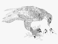 Eagle Moose Art, Eagle, Paintings, Animals, Animales, Paint, Animaux, Painting Art, Animal