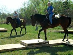Trail Horse Obstacle Challenge- Bridlewood Equestrian Oklahoma