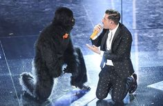 As the man in the ape suit is finally named, can anyone beat Francesco Gabbani at this year's Eurovision Song Contest? Eurovision Italy, Eurovision 2017, Eurovision Song Contest, Festival 2017, Dance Routines, February 11, New Image, Costume Ideas, Karma