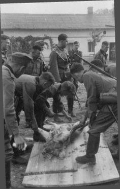 """Photo Album  """"Meine Dienstzeit"""" - march into Russia 1941 through the eyes of an infantry man"""