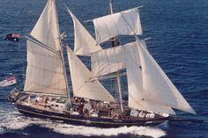 Schepen SAIL 2015   Tall Ships Young Endeavour uit Australië