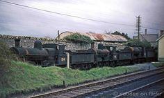 60s steam 04-65 CIÉ Locomotive104 in store in County Cork. by dubdee, via Flickr