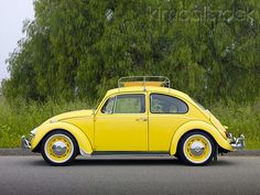 1967 Vw Beetle Yellow Profile View On Pavement By Trees Vw