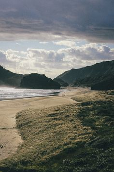 Bethells beach, New Zealand | Dexter Murray