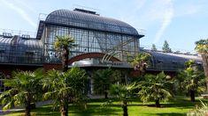Palmengarten - Frankfurt