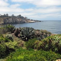 Oceanside to La Jolla    The Best Inn-to-Inn Hikes in California    An alternative to backpacking, inn-to-inn hiking lets you spend your days in the great outdoors—and your nights in a comfortable bed.