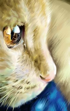 great cat's eye...wish the original pinner had included website or artist's name