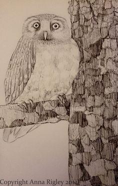 Anna Rigley - Home Owl, Anna, Bird, Artist, Animals, Animales, Animaux, Owls, Birds