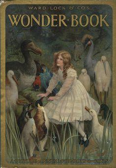 Wonder Boook, 1915