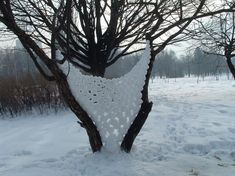 snoweballExperiment