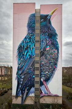 Collin van der Sluijs and Super A, Two amazing artists have painted a huge bird on this building in Germany