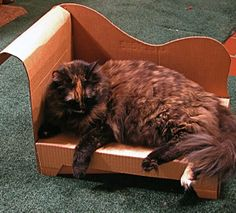 """Cats love cardboard boxes, but they don't look nice strewn around the house—so the Evil Mad Scientists DIY site details how to assemble a hilarious cardboard box """"chaise lounge"""" for your favorite kitty. All it takes is a few boxes and some cutting and folding, and they offer a PDF pattern download to get it just right. Once your feline's chaise is done, she'll love having a cardboard box to lounge in and you'll have a conversation-starter in your liviing room."""