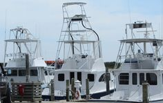 Boats and More Boats  8X10 Photograph Print by CathyLindseyART, $7.95