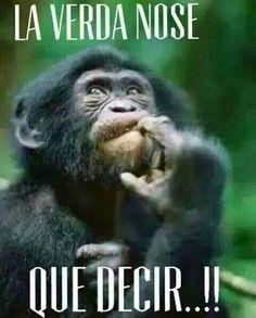 Memes chistosos mexicanos buenos dias 66 ideas for 2019 Funny Spanish Memes, Spanish Humor, Funny Picture Quotes, Funny Quotes, Funny Pictures, Mexican Memes, Funny Emoji, Humor Mexicano, Funny Phrases