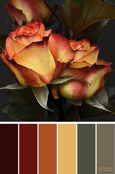 Fall Color Palette, Colour Pallette, Colour Schemes, Color Combos, Fall Paint Colors, Paint Color Palettes, Autumn Colours, Bedroom Color Schemes, Nail Colors