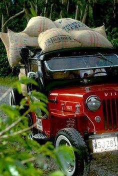 ¡¡¡¡WILLIS CARGANDO EL FRUTO DE NUESTRA TIERRA COLOMBIANA EL CAFÉ MAS SUAVE DE MUNDO!!!! Colombian Art, Colombian Coffee, Haiti Tourism, Colombia South America, Colombia Travel, Jeep Cj, Old Trucks, Picture Photo, Photos