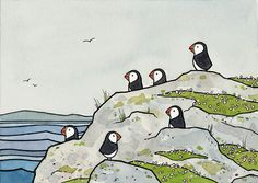 Whimsical Puffins and Sea Thrift 8x10 Print by studiotuesday, $30.00