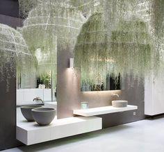 Die 141 Besten Bilder Von Hangende Pflanzen Indoor House Plants