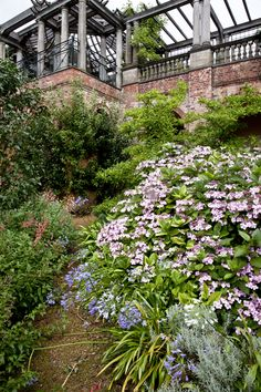 Pleasing Monmouth Coffee Definitely Vying For The Title Of Londons Best  With Extraordinary Secret Gardens  Hideaways Of North London With Lovely Tiger Balm Gardens Singapore Also Water Garden Ideas In Addition Bq Garden Fork And Nutcracker Covent Garden As Well As In The Night Garden Youtube Full Episode Additionally The Orchard Tea Garden From Pinterestcom With   Lovely Monmouth Coffee Definitely Vying For The Title Of Londons Best  With Pleasing Nutcracker Covent Garden As Well As In The Night Garden Youtube Full Episode Additionally The Orchard Tea Garden And Extraordinary Secret Gardens  Hideaways Of North London Via Pinterestcom