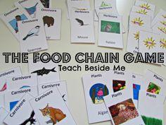 Food Chain Game- Free Printable - Teach Beside Me