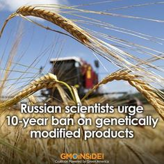"""Russia Bans GMOs: Putin Leads World in """"Ecologically Clean"""" Food Exports AnonHQ"""