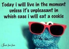 Cookie Monster thought for the day