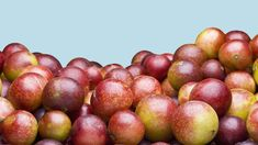 Camu camu, a berry grown in South America, is a trendy new superfood touted for its vitamins and minerals. Find out what a nutritionist says about camu camu and how to use it in meals. Apple Cider Vinegar Health, Forest Fruits, Cbd Hemp Oil, Dog Snacks, Vitamins And Minerals, Superfoods, Berries, 5 Pounds, Turmeric