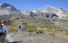 mt st helens 2013 | Hikers cross the flats on the north side of Mount St. Helens on their ...